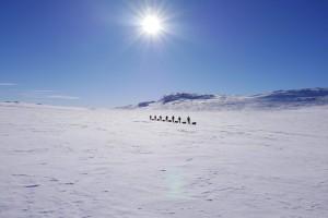 arctic adventure langlaufen